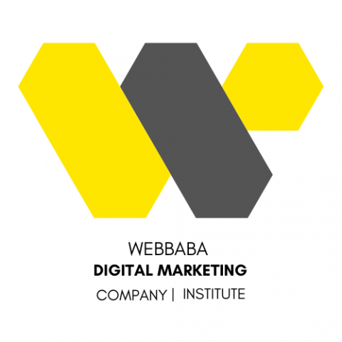 WEBBABA | Professional Digital Marketing Course in Chandigarh, Zirakpur