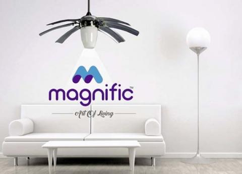 Magnific Fans
