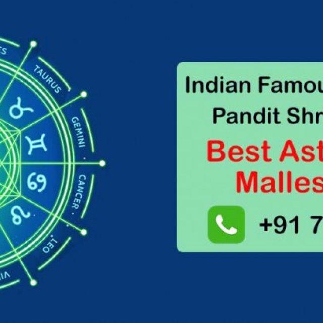 Best Astrologer in Malleshwaram | Famous Top Astrologer Malleshwaram |
